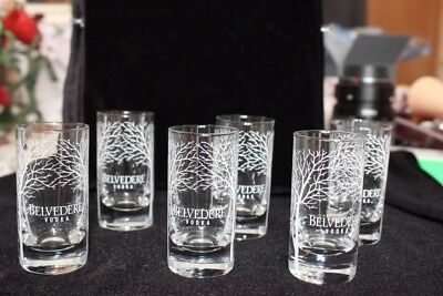 Set of 6 Belvedere Vodka Satin Tree Shot Glass SET Clear  NEW IN BOX
