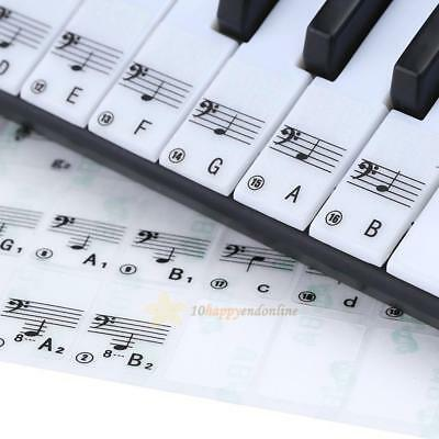 Reusable Transparent Piano 61 Key Note Keyboard Stickers for Learning Play Music