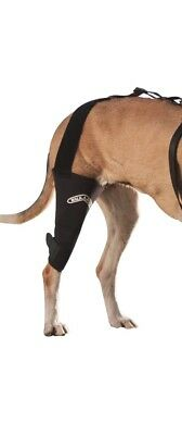 Walkabout Knee brace for Cats and Dogs