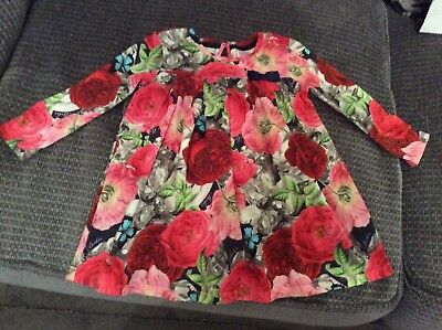Ted Baker Baker Baby 12 To 18 Months Dress