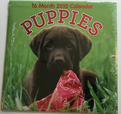 2018 Puppies Dogs Wall Calendar 16-Month 22x12""