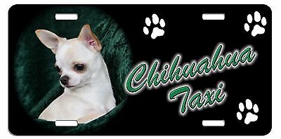 Chihuahua blond Taxi Line License Plate  ((( SPECIAL LOW CLEARANCE PRICE )))