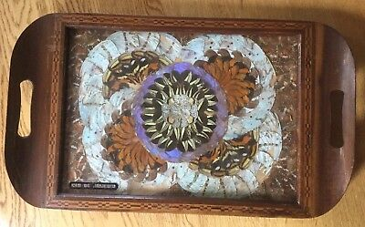Vintage Brazilian Butterfly Wing Art Wood Serving Tray Inlay Border Morpho