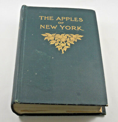 """Antique 1905 Copy Of """"the Apples Of New York"""" With Vintage Photos Of Afton N.y."""