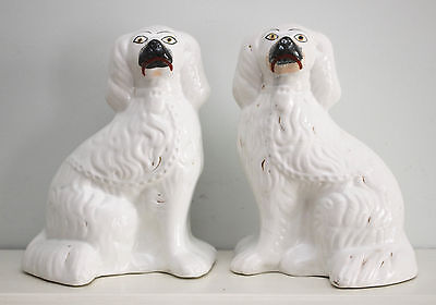An Appealing Pair of Antique c19th Staffordshire Wally Dogs