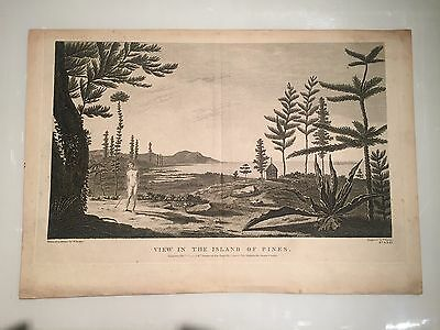 Rare First Edition 1784 Hodges Captain Cook View in the Island of Pines - VR
