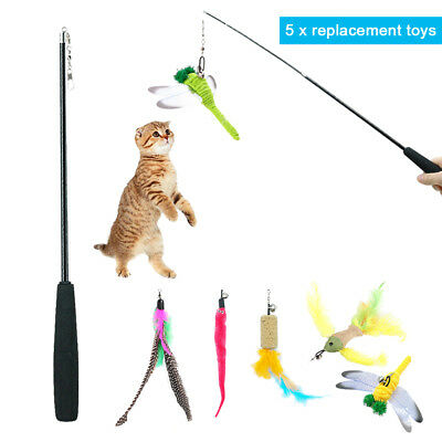 5pcs/lot Funny Kitten/Cat Teaser Wand Rod Bird Feather Wire Chaser Pet Toys Play