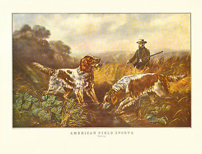 CURRIER & IVES print of 19th Century HUNTING DOGS - SPANIEL (1955 reprint)