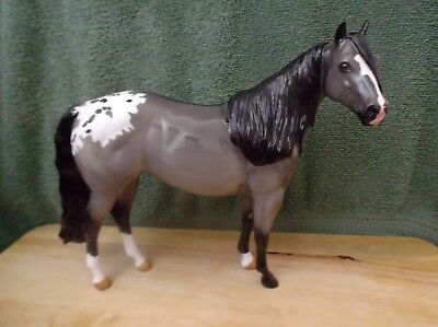 Peter Stone 2017 ISH OOAK SHARPTON 'bach home indiana' mare grulla appy glossy