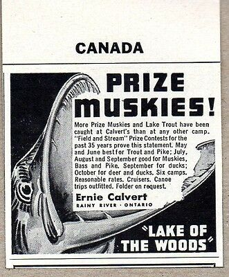 1950 Print Ad Prize Muskies Lake of Woods Ernie Calvert Rainy River Ont Canada