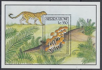 XG-AO019 SIERRA LEONE IND - Mushrooms, 1990 Nature, Wild Animals MNH Sheet