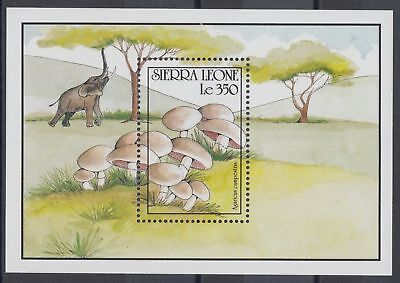 XG-AO018 SIERRA LEONE IND - Mushrooms, 1990 Nature, Wild Animals MNH Sheet