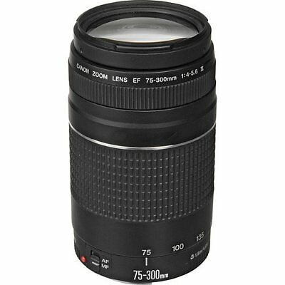 Canon EF 75-300mm f/4-5.6 III Telephoto Zoom Lens for Canon SLR Cameras (Certifi