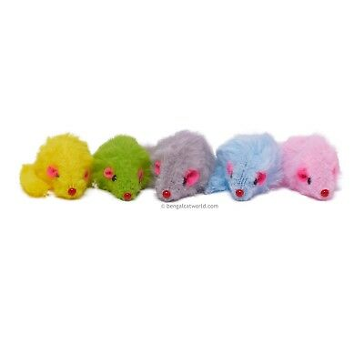 Mini Fleecy Rattle Mouse Cat Kitten Toy Play Fun PACK OF 5 MICE 8 Colour Options