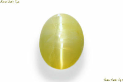 Exclusive 5.840 Cts Natural Very Rare Museum Grade Opal Cat's Eye Cabochon Gem!!