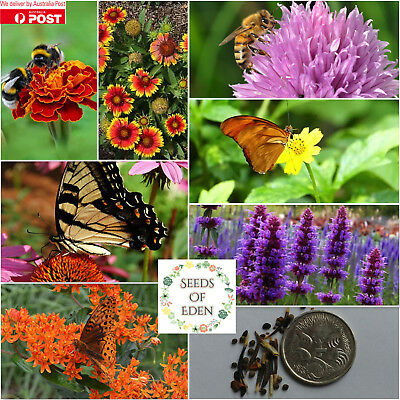 Bee & Butterfly Friendly Flower Mix Seeds