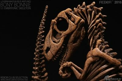 "REBOR Club Selection: ""Bony Bonnie"" 1:1 Lourinhanosaurus antunesi Embryonic Skel"