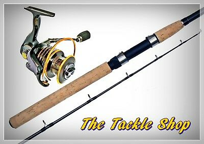 6' H/D 15Kg IM6 Carbon Boat Combo -Seaside SWCL 5000 11BB Reel + Taima180/15 Rod