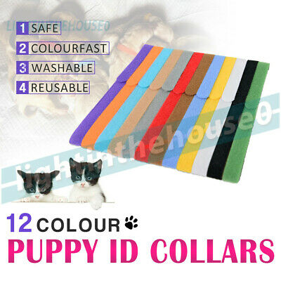 12x Colors Soft Whelping Pet ID Collar Bands Kitten Puppy Identification Tags AU
