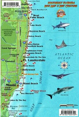 Map Of Southeast Florida Beaches.Southeast Florida Dive Map Coral Reef Creatures Guide Franko Maps