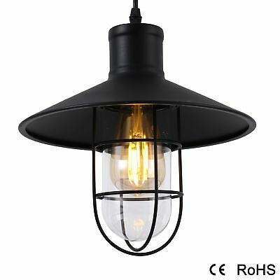 Vintage Style Iron Industrial Pendant Lamp Retro Glass Light Wire Cage Ceiling