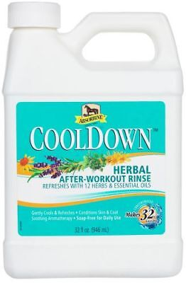 Absorbine Cool Down Waschlotion 946 ml