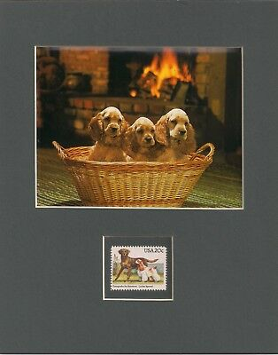 Cocker Spaniel Puppies - Frameable Postage Stamp Art - 0455