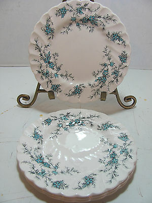 Myott Staffordshire Forget Me Not Set Of 4 Dessert Or Bread & Butter  Plates