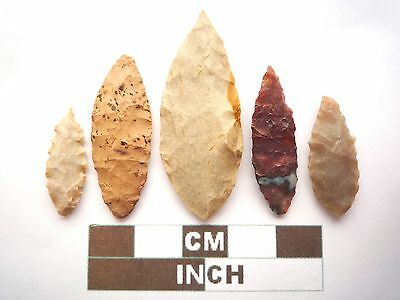 Neolithic Arrowheads, 5 x Leaf Style Artifacts - 4000BC - (Z038)