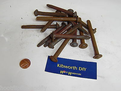 "1 kg 3"" 75mm VINTAGE TRADITIONAL SPOUT NAILS BILLY COCK HEAD NOS RESTORATION 19"