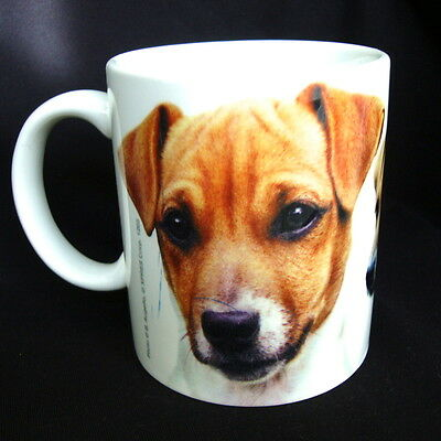 JACK RUSSELL Coffee Mug Spoiled dated 1999 never used dog puppy NEW Terrier