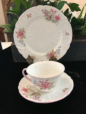 Shelley Stocks 3 Piece Set (s) Cup Saucer & Lunch Plate