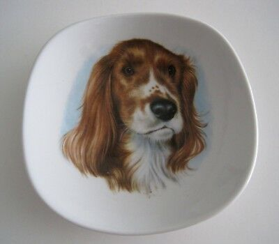 SPRINGER SPANIEL Dog Trinket Pin Dish Bavaria Germany Arzberg Golden Crown E&R