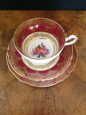 Paragon English China Trio