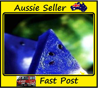Watermelon Seeds New Varietie Blue Flesh Watermelon Edible Fruits 25 Seed Lots