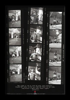 MUHAMMAD ALI FILM STRIPS 13x19 FRAMED GELCOAT POSTER GREATEST WORLD CHAMPION NEW