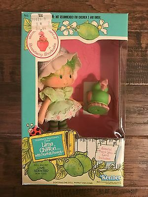 "1982 Kenner ""STRAWBERRY SHORTCAKE"" (Lime Chiffon With Parfait Parrot) Doll, NEW!"