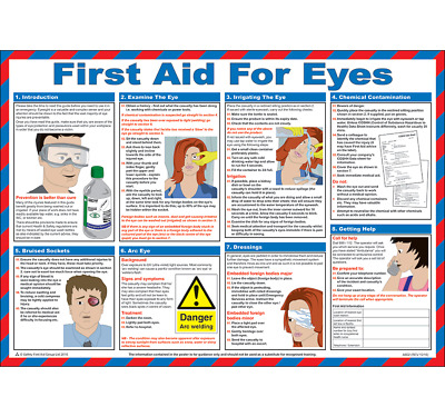 First Aid For Eyes Laminated Poster 590mm x 420mm (P319)