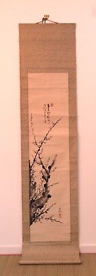 Vintage Chinese hanging scroll, ume tree, Japan import 200cm (AE1833)