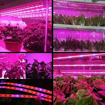 Topled Light® LED Plant Grow Strip Light with Power Adapter,Full Spectrum SMD 5M