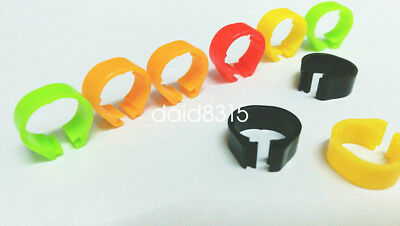 5pcs *8mm $0.99 pigeon birds leg for pigeon colorful chicken rings free shipping