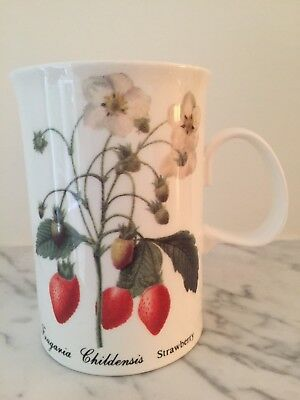 Dunoon Blenheim Mug Cup Fruit Adapted From Redoutes