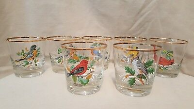 Set 7 Vtge Clear Glass Birds Libbeys Low Ball Glasses With Gold Trim & Bonus!