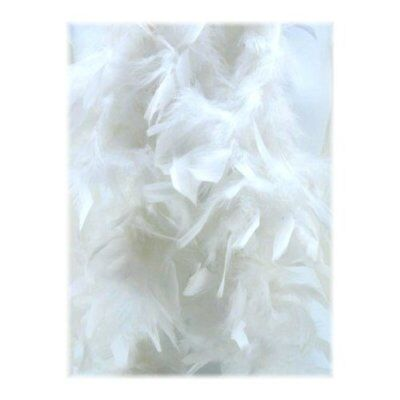 Economy 6 White Feather Boa Costume Accessory