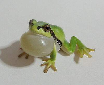 Capsule Toy Super Realistic Green Tree Frog magnet Gashapon Japan