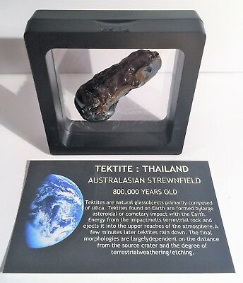 """RARE"" 14.4 Gram TEKTITE Museum Quality with stand and label"