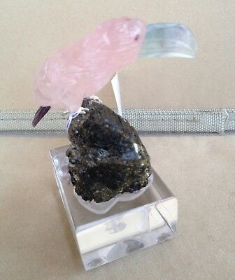 "Rose Quartz and FluoriteToucan on Black Tourmaline 3 1/2""""-Peter Muller"
