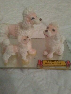 """64 Vintage Miniture POODLE FIGURINES Dad-Mom-Puppy Greeley Colo. 2"""" Inches JAPAN"""