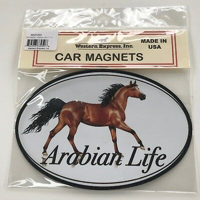 Abrabian Life Bay Oval Horse Car Magnet Made in USA