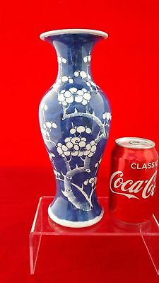 "Superb Chinese Antique 19thC/20thC Kangxi Prunus 10"" Vase Qing Double Ring Mark"